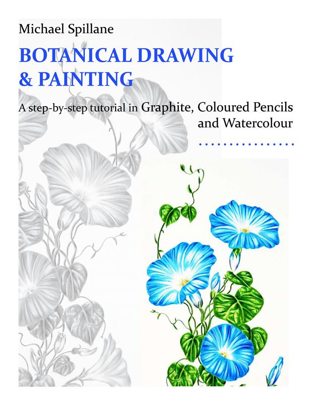My book Botanical Drawing & Painting is now available for purchase on Amazon.