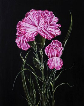 Dianthus -- Oil on wood panel -- 20 x 16 inches