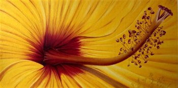 Hibiscus Flower Centre -- Oil on canvas -- 48 x 24 inches