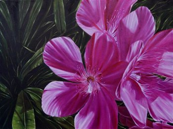 Oleander (Nerium oleander) -- Oil on wood panel -- 24 x 18 inches